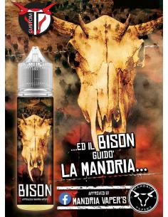 Bison Liquido TD Custom Aroma 20 ml Vaniglia Nocciola Biscotto
