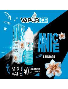 Anice Stellare Vaporice Liquido Vaporart 40 ml Anice Ghiacciato