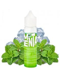 Menta Glaciale Vaporice Liquido Vaporart 40 ml Aroma Menta