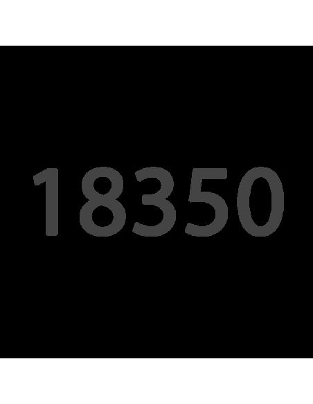 18350 Batterie