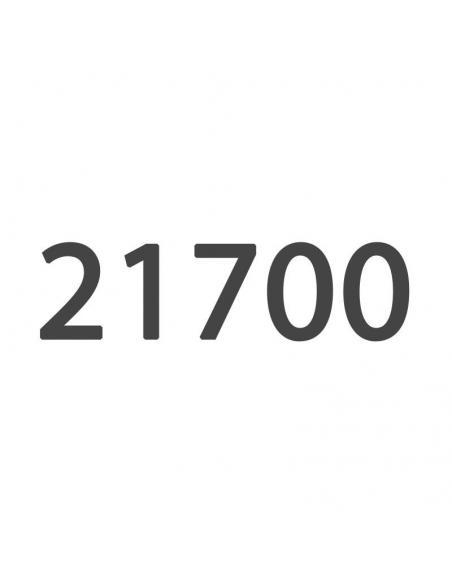 21700 Batterie